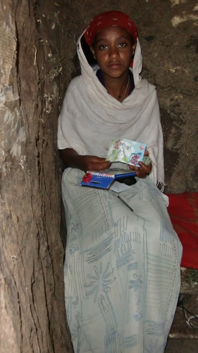 2012 Birhane Abebe